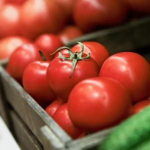 卷首语 | 这碗番茄饭里有我的爱