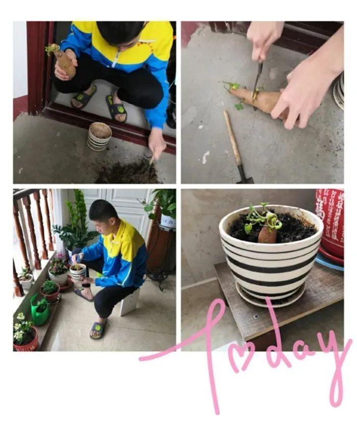 滨湖志臻|五一劳动节,致敬最可爱的人9479 作者: 来源: 发布时间:2020-5-5 08:15