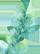 安平志臻的园林环境309 作者: 来源: 发布时间:2020-5-15 17:30