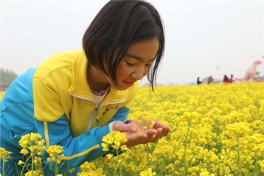 安平志臻的园林环境8401 作者: 来源: 发布时间:2020-5-15 17:30