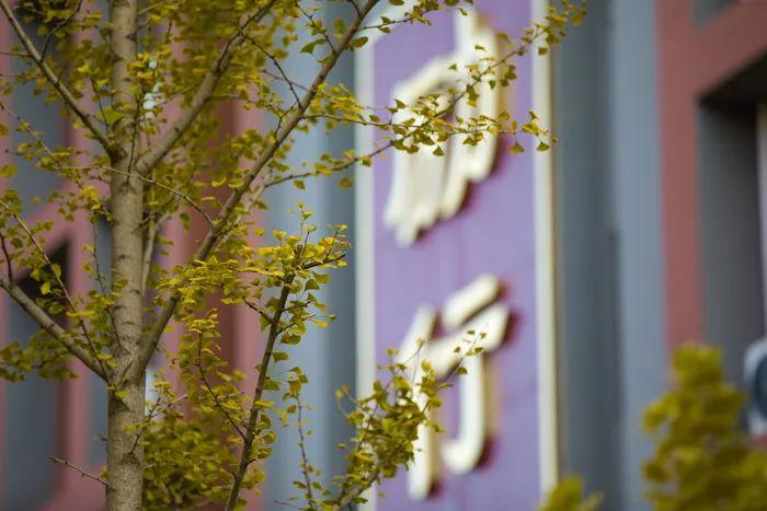 滨湖志臻丨这里的秋惊艳了谁的时光?3364 作者: 来源: 发布时间:2020-10-12 11:30