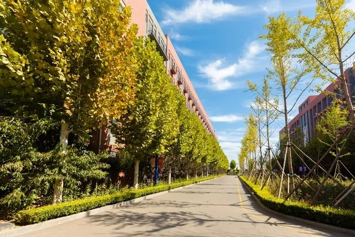 滨湖志臻丨这里的秋惊艳了谁的时光?8638 作者: 来源: 发布时间:2020-10-12 11:30