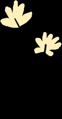 【视频】乘风破浪的志臻丨春风吹,志臻天空升起多彩风筝7811 作者: 来源: 发布时间:2021-3-19 08:48